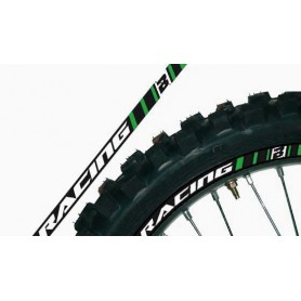 Kit Déco De Jantes BLACKBIRD Green