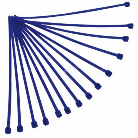 Rilsan-RTECH-100-Pièces-Blue