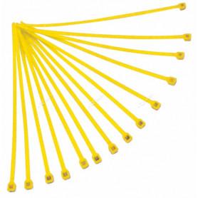 Rilsan-RTECH-100-Pièces-Yellow