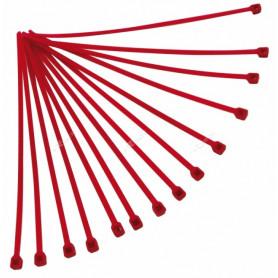 Rilsan-RTECH-100-Pièces-Red